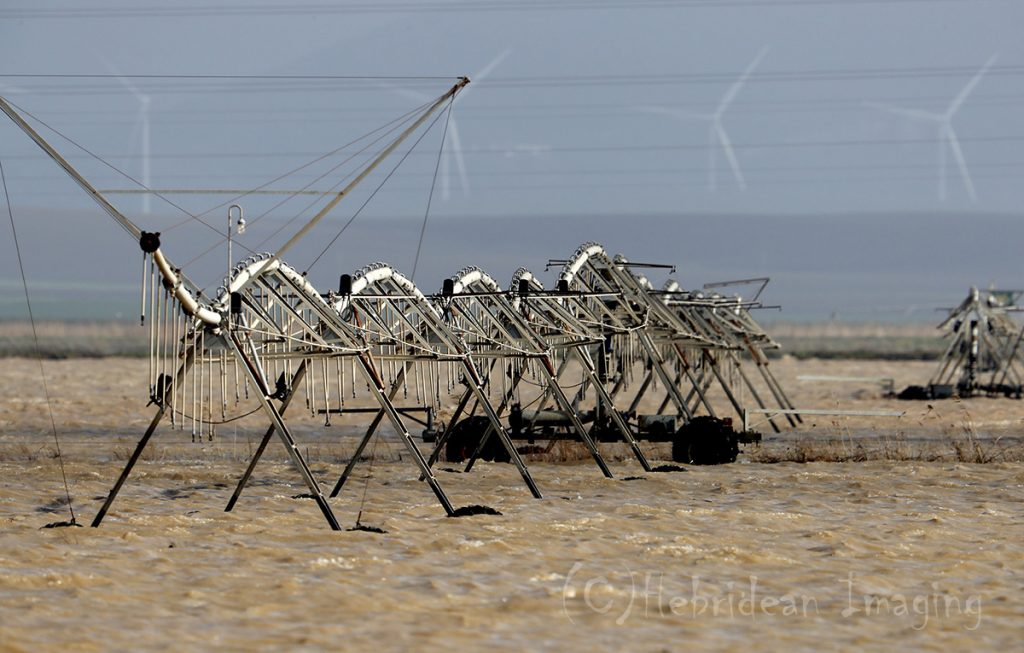Hebridean Imaging - Yvonne Benting - Bird Photography - Spain - Floods - Irrigation - La Janda
